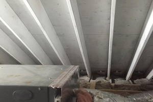 After remediation of ceiling | After