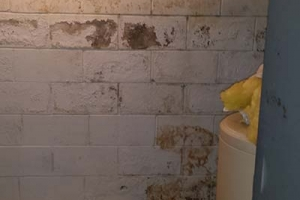 Peeling blistering paint, seepage through wall | Before