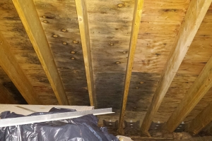 Black mold on ceiling of attic | Before