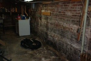 Mold damage on brick wall- Northern, NJ- Eco- Dry Waterproofing