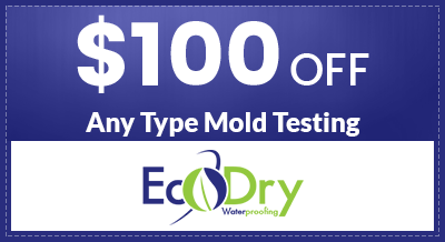 $100 off Any Type Mold Testing