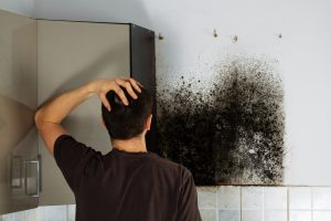 Mold in kitchen- Northern, New Jersey – Eco-Dry Waterproofing